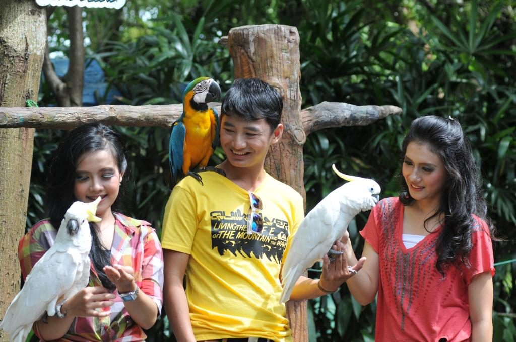 Wahana Birdpark - The Jungle Waterpark Bogor