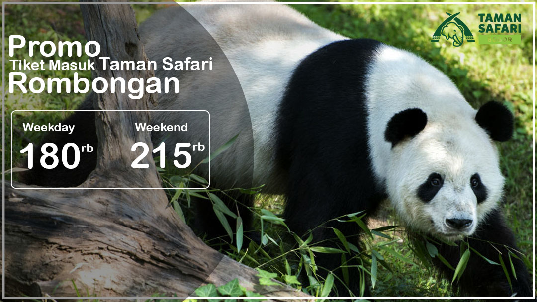 Promo Harga Tiket Masuk Taman Safari Cisarua Bogor September