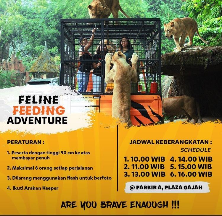 Promo Taman Safari Bogor Maret 2021 Harga Tiket Masuk Rp 210 000